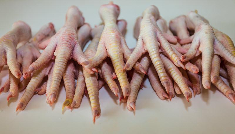 Chicken's Feet