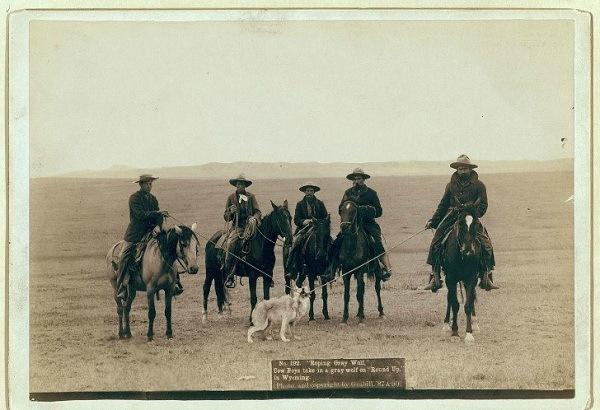 Historic Wild West 11