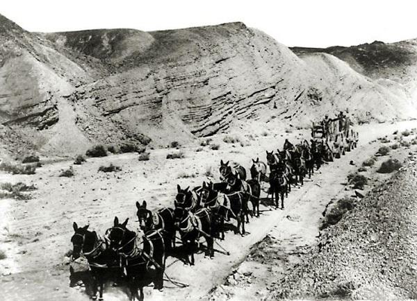 Historic Wild West 63