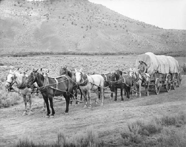 Historic Wild West 80