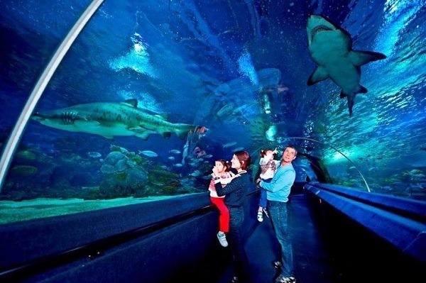 Underwater Structures 13