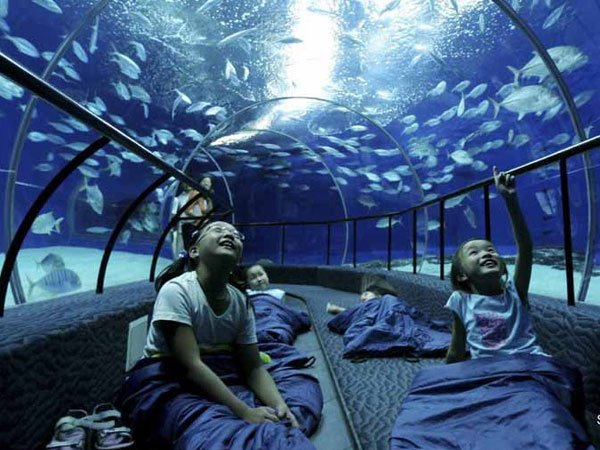 Underwater Structures 14