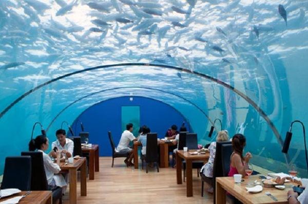 Underwater Structures 5