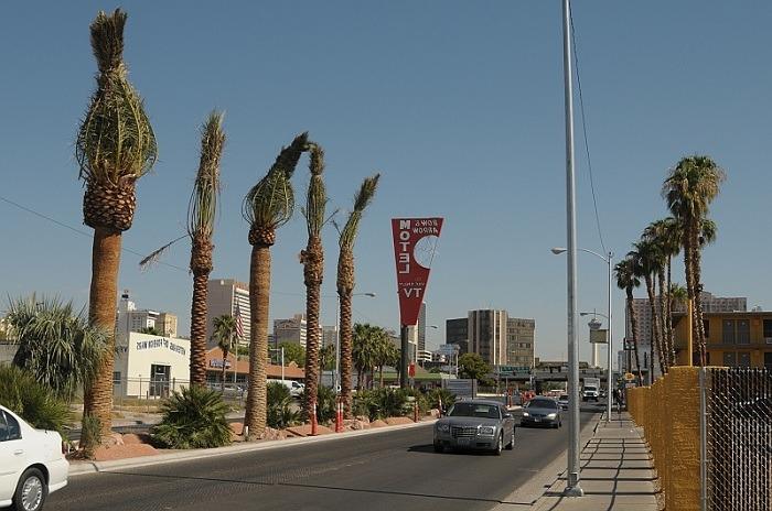 Photos of Las Vegas 13